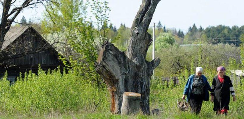 «Единая Россия», обокрав людей на 5 пенсионных лет, «дарит» крестьянкам 40 минут