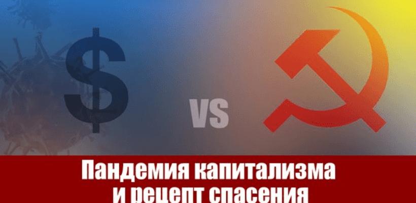 Дмитрий Новиков: Пандемия капитализма и рецепт спасения