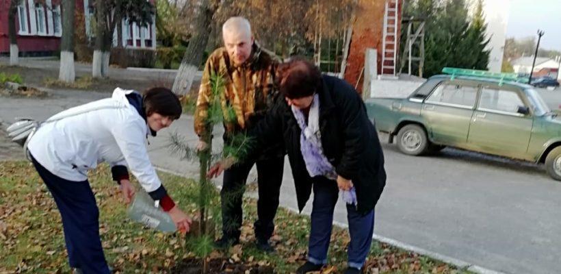 Спасские коммунисты присоединились к акции «Сад Победы – Сад Жизни»